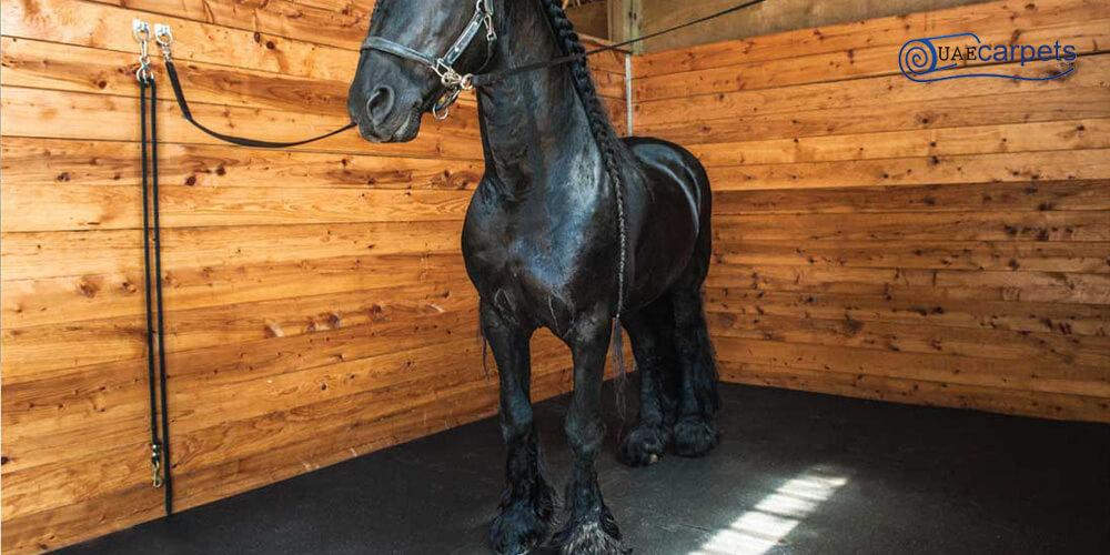 Horse-Stall-Mats