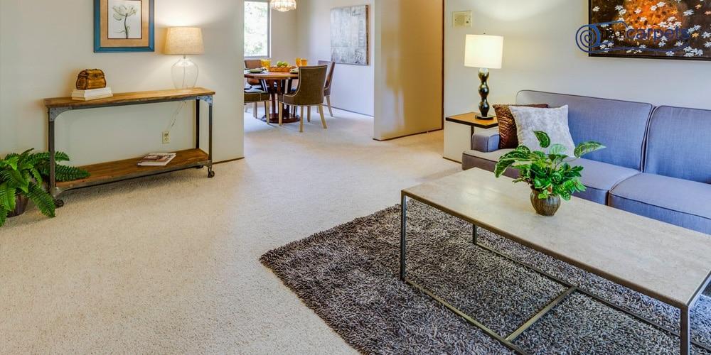 wall-to-wall-carpets